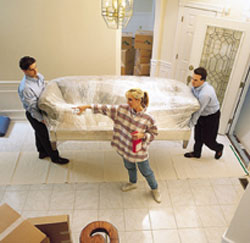 professional movers 11